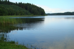 Panorama_j._Olszanowskiego